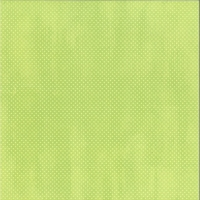 Scrapbookingpapier Double Dot mint