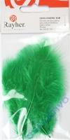 Deko-Federn 8cm 10 Stück dunkelgrün