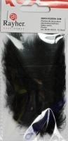 Deko-Federn 8cm 10 Stück schwarz