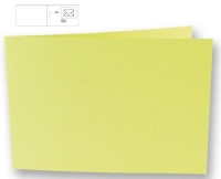 Karte B6 quer 232x168mm 220g pastellgrün