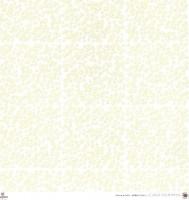 Scrapbooking Papier White & Ivory Miniflowers