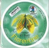 Florentine Faltblätter Vintage 10cm rund 65 Blatt gelb/türkis