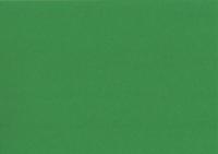 Heyda Fotokarton 50x70 cm 300g/m² laubgrün