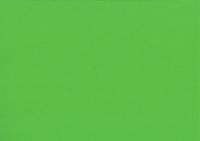 Heyda Fotokarton 50x70 cm 300g/m² grasgrün