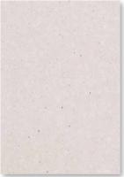 Graupappe 50x70 cm 1050g/qm